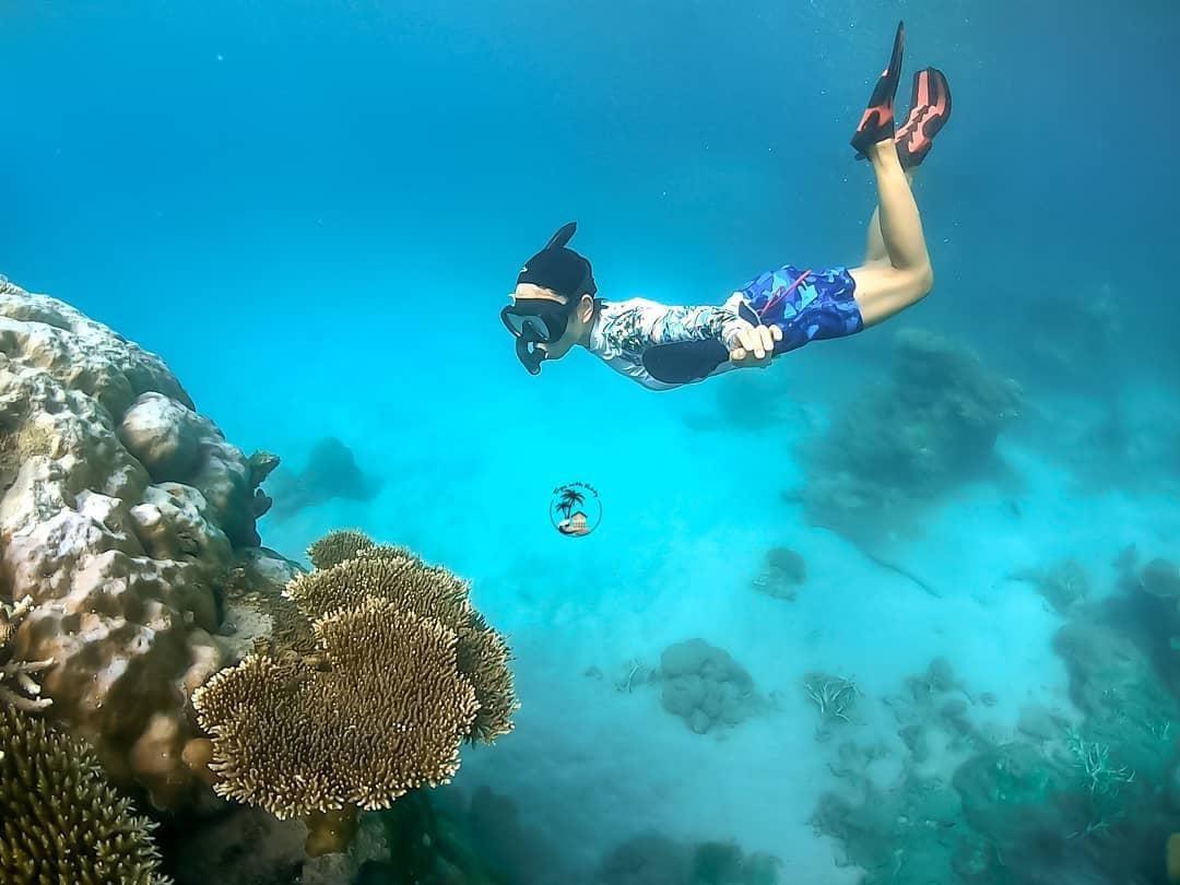 Trải nghiệm lặn ngắm san hô trong chuyến du lịch Côn Đảo