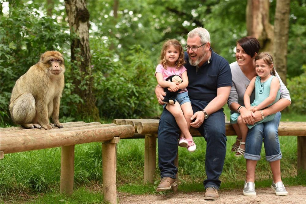 rừng khỉ thiêng
