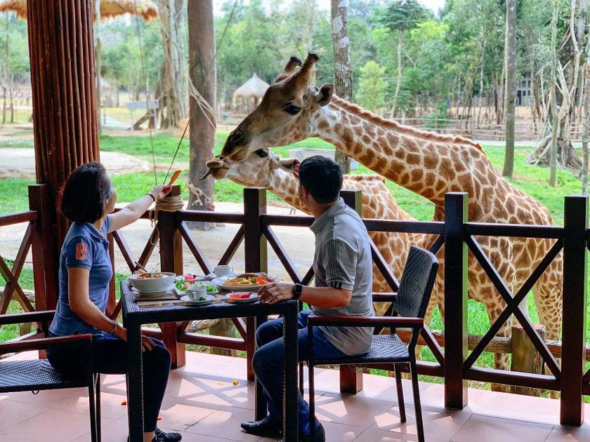Nhà hàng Giraffe