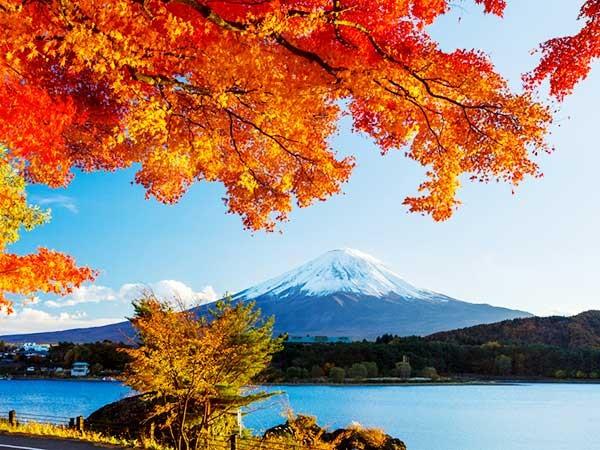 Núi Phú Sĩ ngập tràn sắc đỏ mùa thu