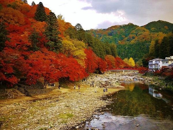 Mùa thu tại thung lũng Korankei