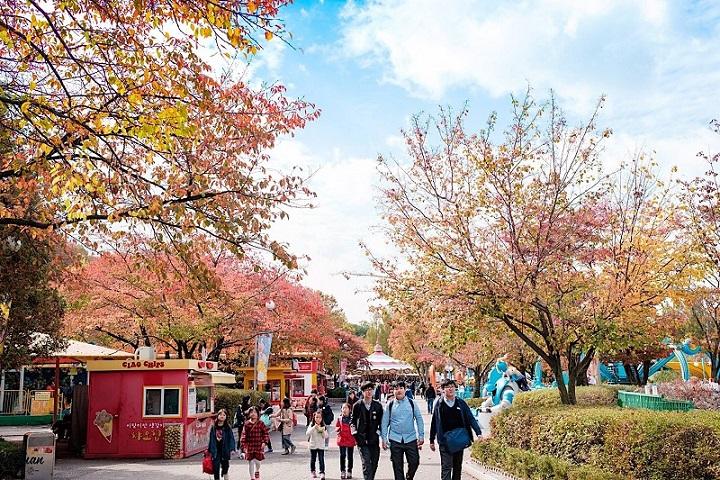 Công viên Yeouido nổi tiếng nhất Seoul