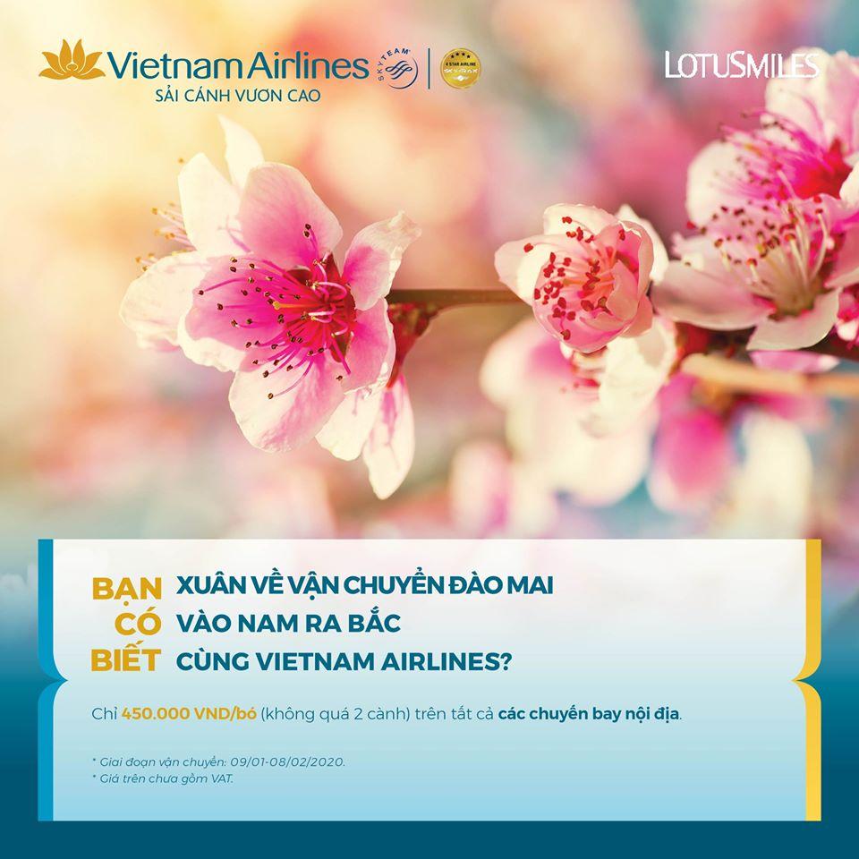 Vietnam Airlines nhận vận chuyển đào mai dịp Tết Nguyên đán 2020