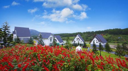 Combo Đà Lạt 3N2Đ: Đà Lạt Wonder Resort 4* + Iris Hotel Đà Lạt 3*