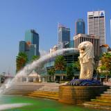 Combo độc đáo Singapore 3N2Đ: Hotel 81 Selegie + Vé máy bay