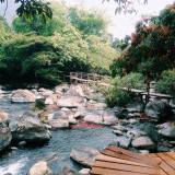 Phong Canh Tuyet Dep Tai Suoi Mooc