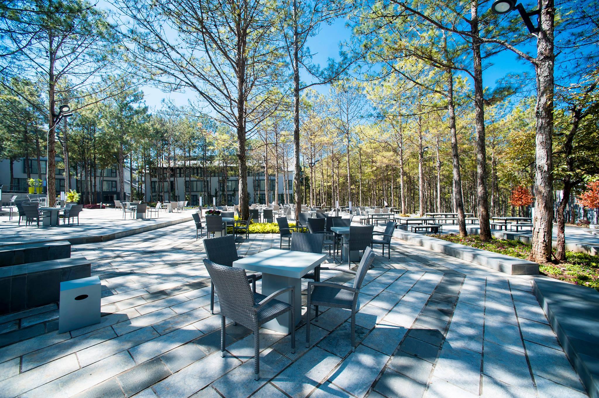 Khuôn viên Terracotta Resort  Đà Lạt