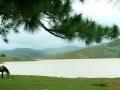 Hồ Suối Vàng (Dankia)