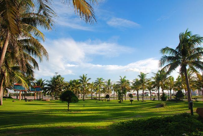 Bãi cỏ xanh mướt -  điểm check in tại bãi biển Phạm Văn Đồng