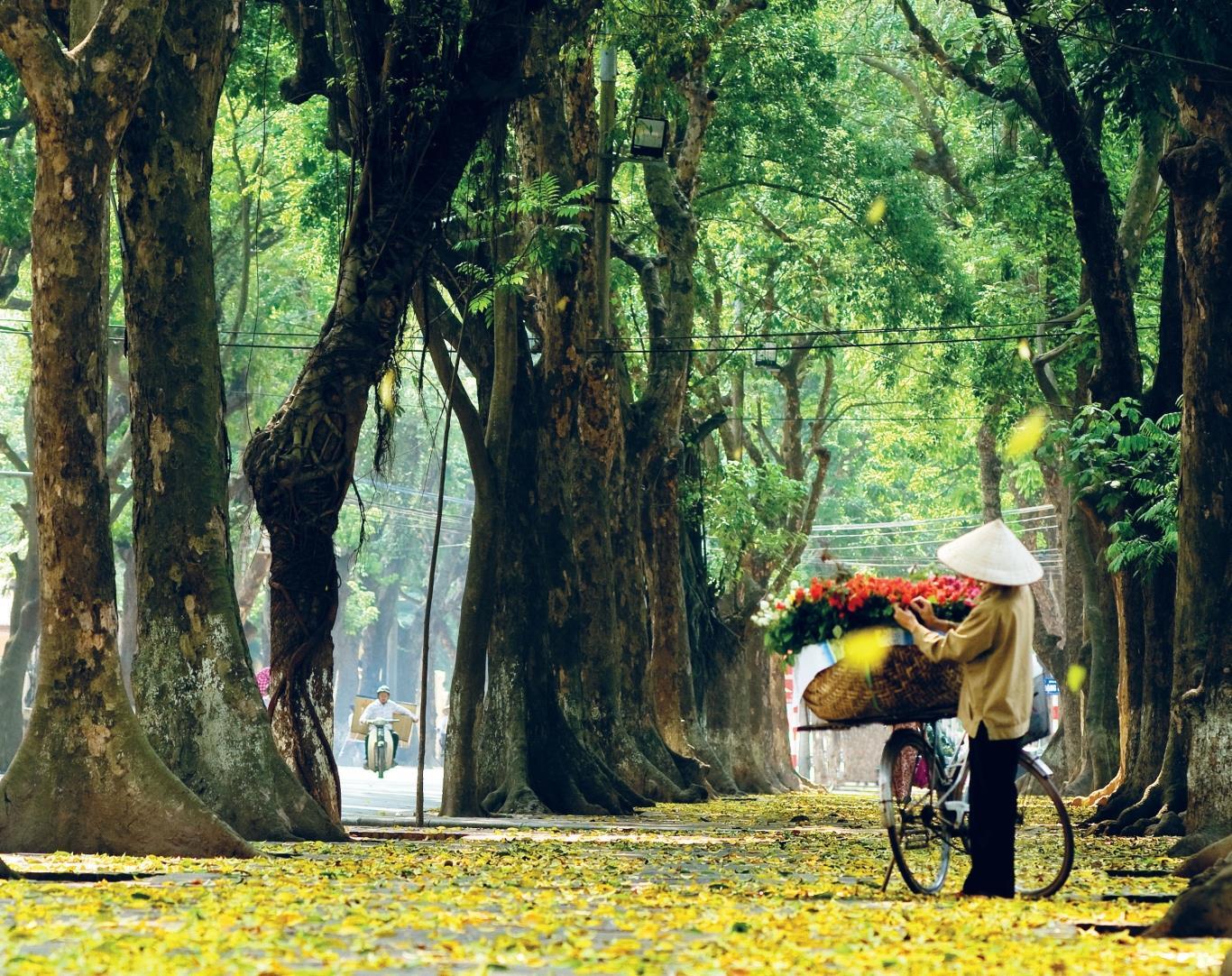 Đặt vé máy bay tháng 10 đi Hà Nội