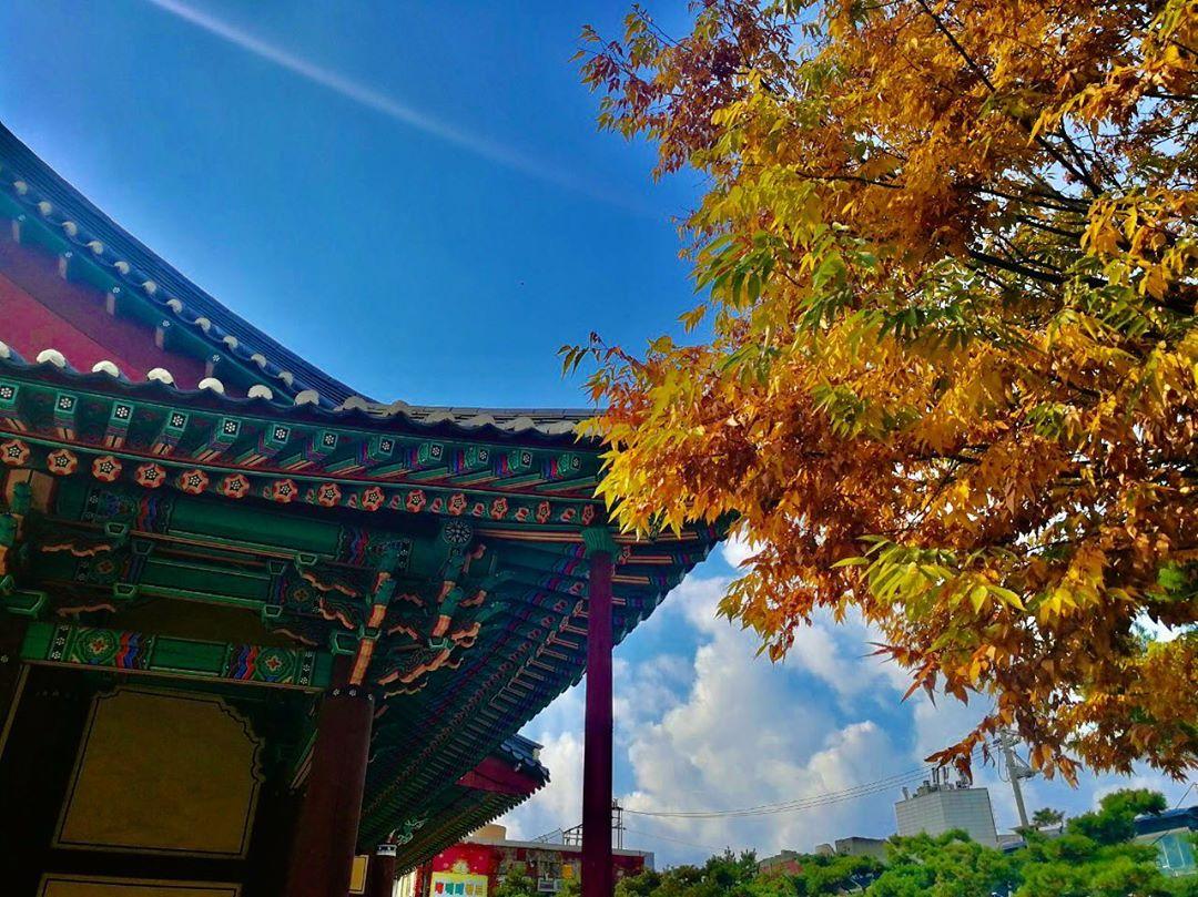 Book vé máy bay giá rẻ đi Hàn Quốc tháng 10