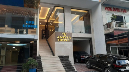 Anivia Tam Đảo Hotel