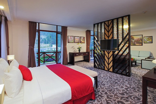 King Suite Moutain View