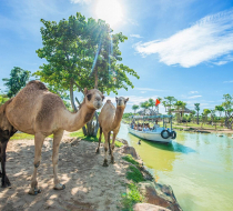 Vinwonders & Safari Nam Hội An