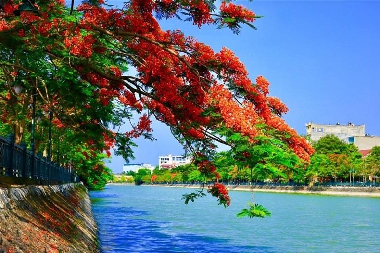 Thành phố hoa phượng đỏ Hải Phòng