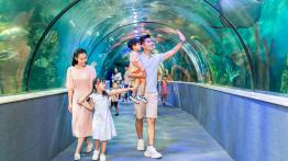 Vé Thuỷ cung Aquarium Times City