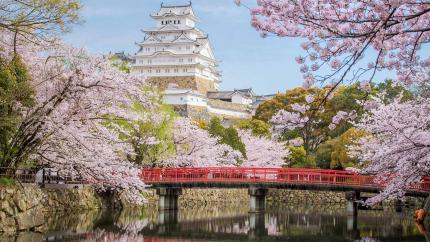 Hà Nội - Tokyo - Núi Phú Sĩ - Kyoto - Osaka - Nagoya 6N5Đ (Bay Vietnam Airlines)