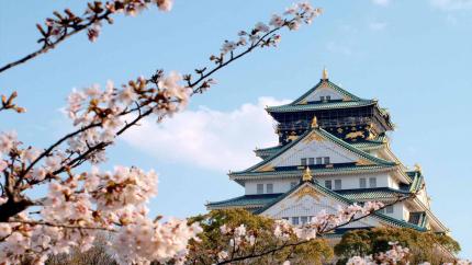 Mùa hoa anh đào: Hồ Chí Minh - Kyoto - Osaka - Kobe - Nagoya - Yamanashi - Tokyo 6N5Đ