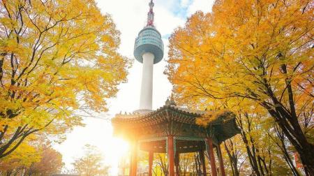 Hà Nội - Seoul -  Đảo Jeju  - Nami - Công viên Everland 6N5Đ (bay Asiana Airlines 5*)