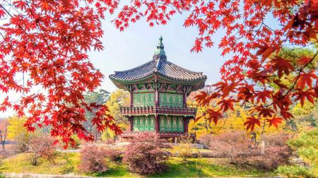Hà Nội - Seoul - Nami - Công viên Everland 5N4Đ (bay Vietjet Air)