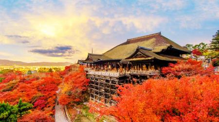 Hà Nội - Tokyo - Núi Phú Sỹ - Kyoto - Osaka - Nagoya 6N5Đ (Bay Vietnam Airlines)