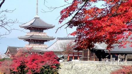Tết Nguyên Đán: Hồ Chí Minh - Osaka - Kyoto - Kobe 5N4Đ