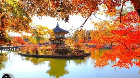 Hồ Chí Minh - Seoul - Nami - Everland Nông trại Táo/Lê 4N4Đ