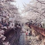 Hồ Chí Minh - Seoul - Jeju - Nami - Running Man 5N4Đ