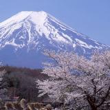 Khám phá xứ sở hoa anh đào: Hà Nội - Nagoya - Nara - Kyoto - Osaka - Núi Phú Sĩ - Tokyo 6N5Đ