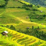 Tp. Hồ Chí Minh - Hà Nội - Hạ Long - Sapa - Hà Nội - Tp. Hồ Chí Minh
