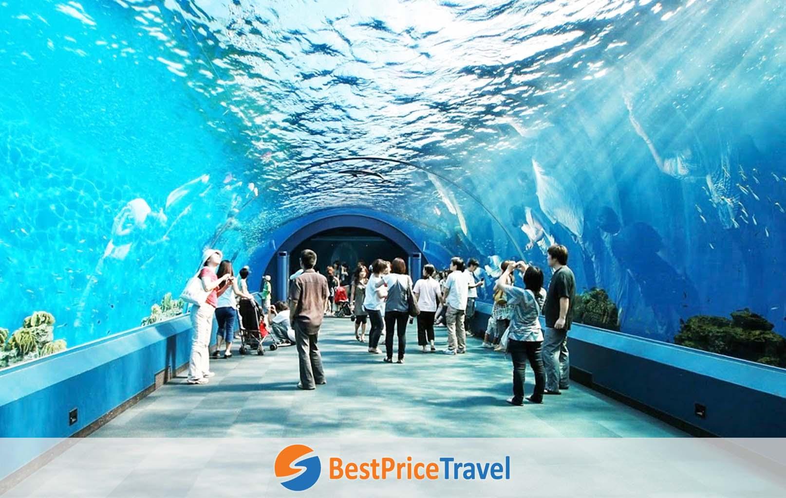 Thủy cung - Underwater World Pattaya