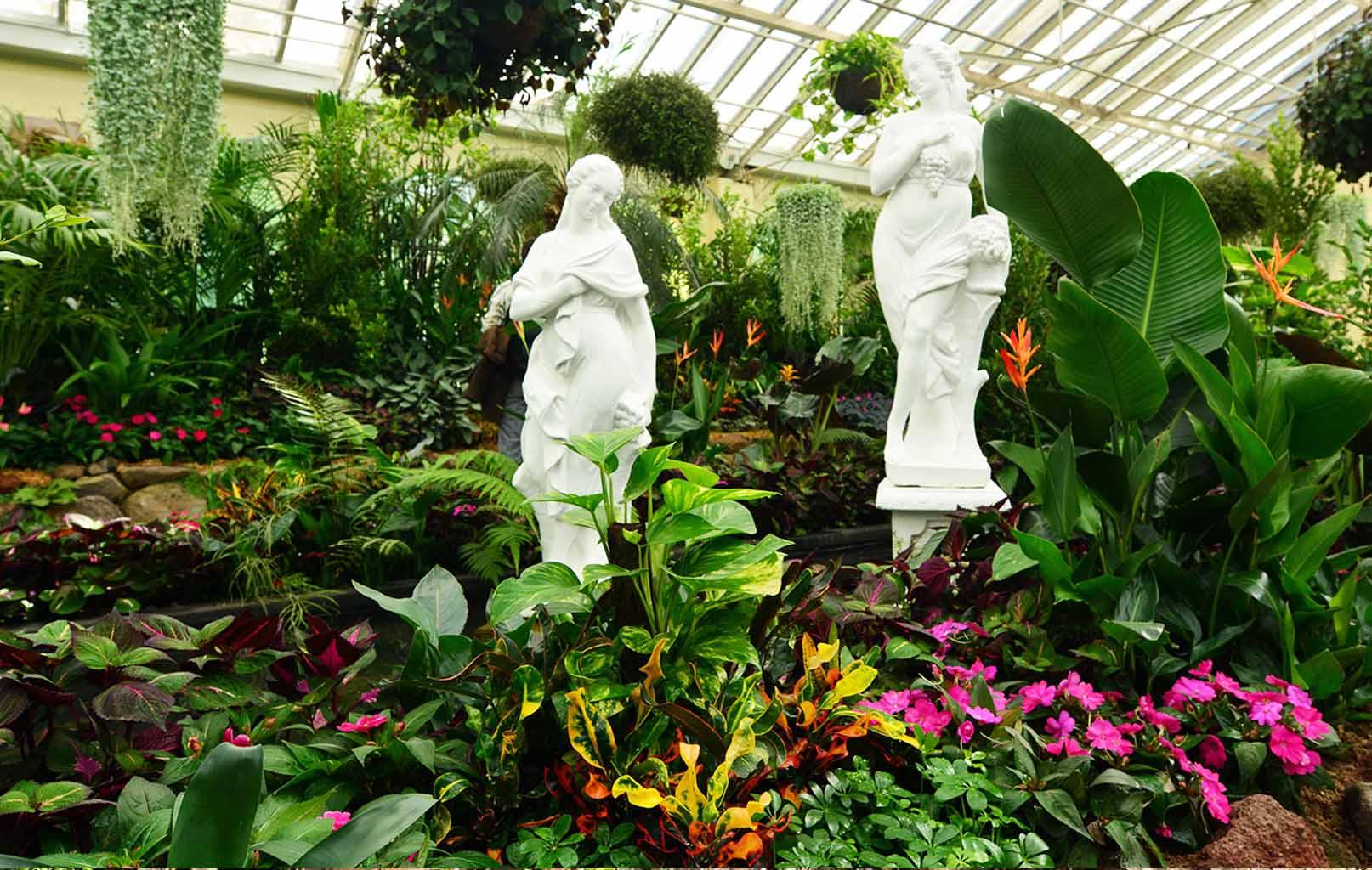 Vườn thực vật Fitzroy Garden